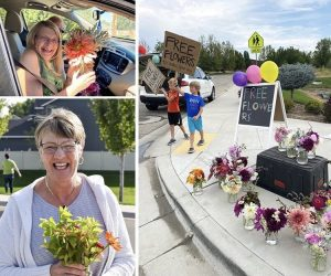 Free flower giveaway